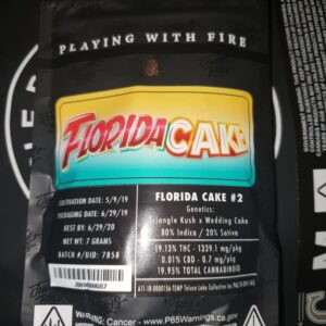 Jungle Boys Florida Cake