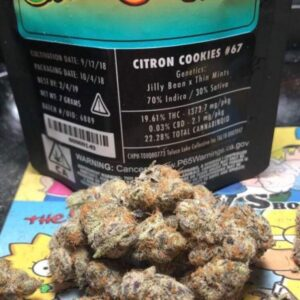 Jungle Boys Citron Cookies
